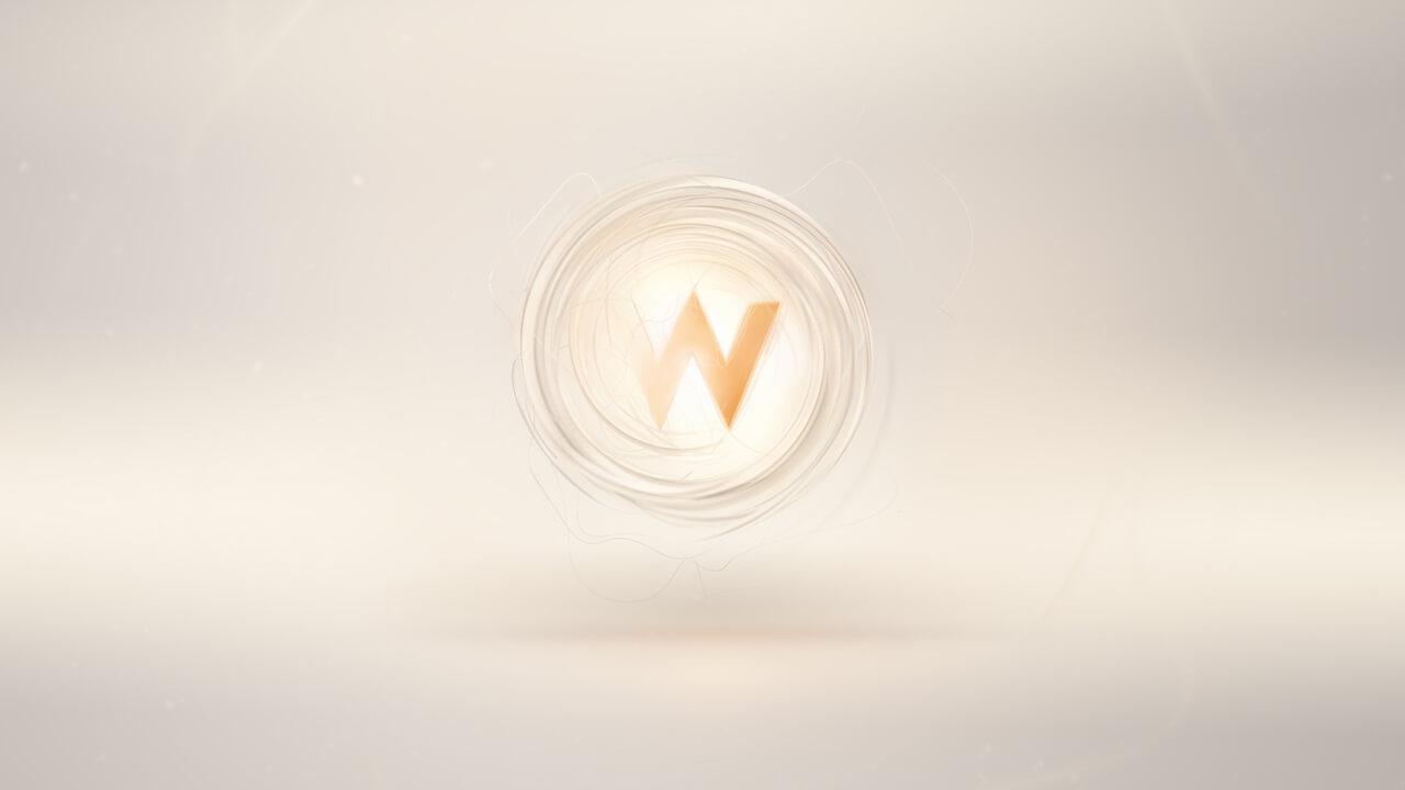 wnetwork_10